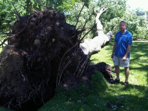 St. Cloud Mayor Dave Kleis inspects storm damage in Hester Park (Photo: Aubrey Immelman)